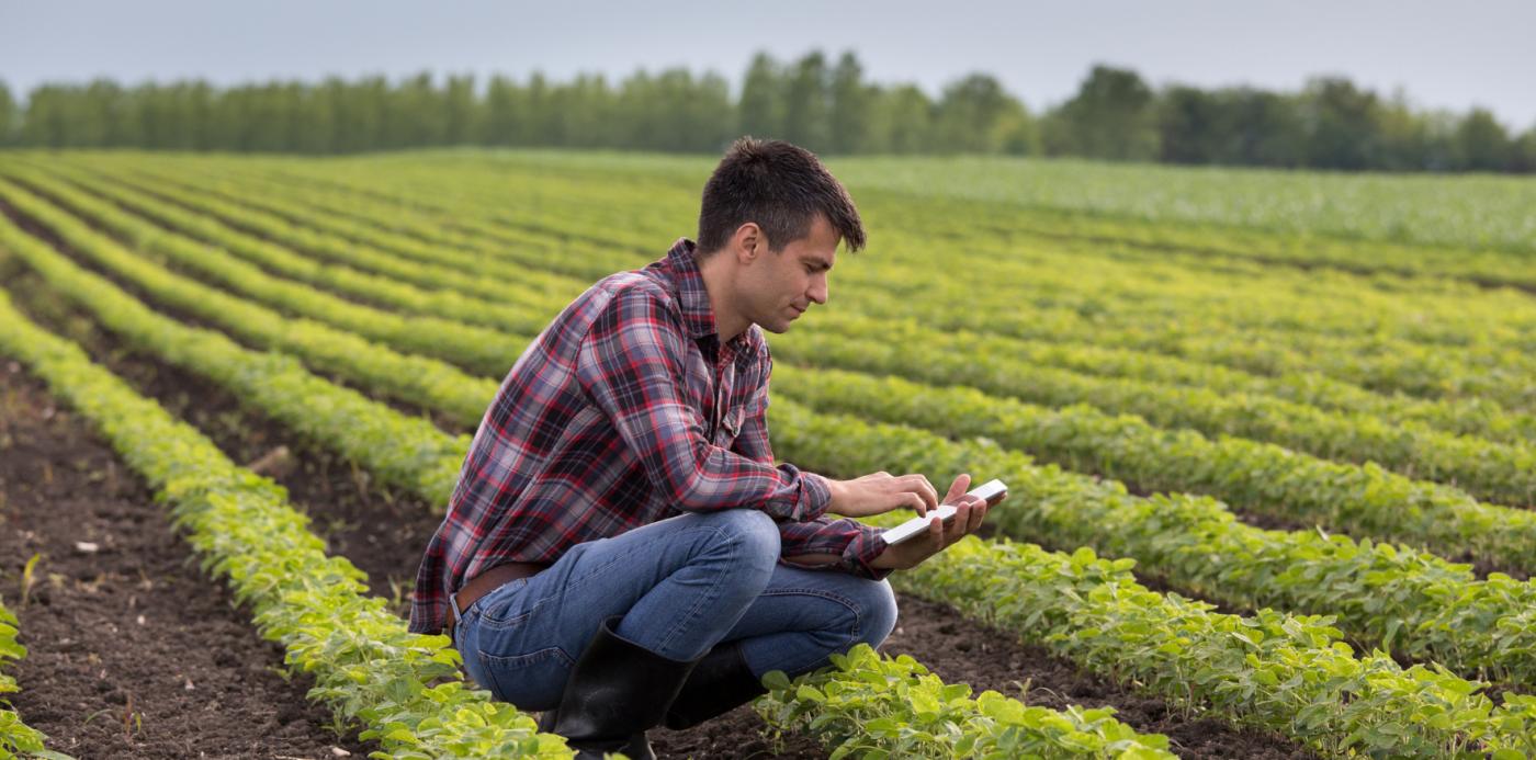 Contrato de Arrendamento Rural: tudo o que você precisa saber